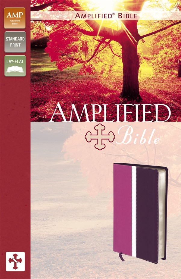 Amplified Bible, Imitation Leather, Pink/Purple