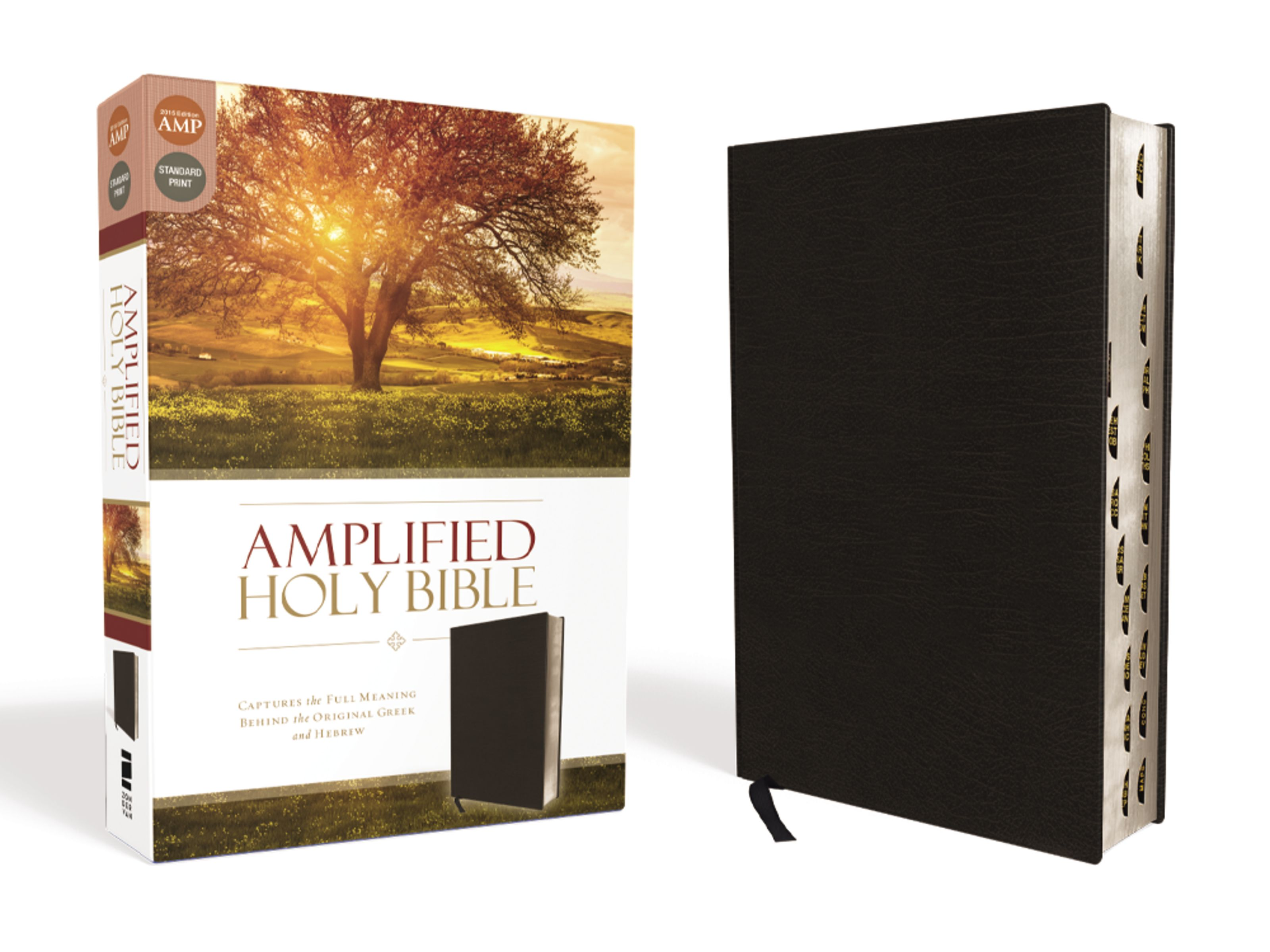 Amplified Holy Bible, Bonded Leather, Black, Indexed