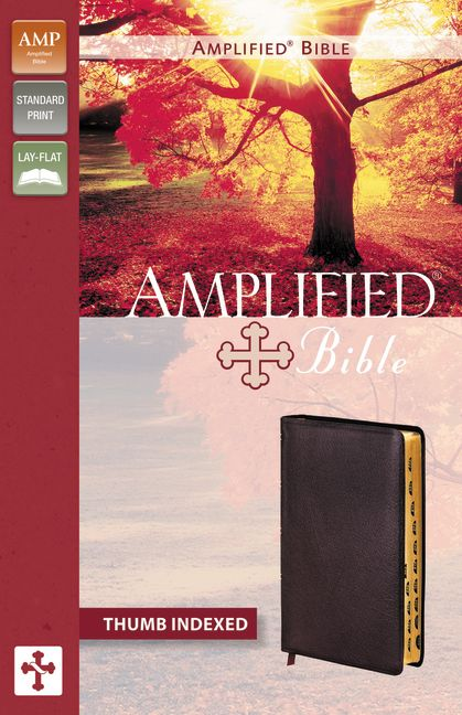 Amplified Bible, Bonded Leather, Burgundy, Indexed