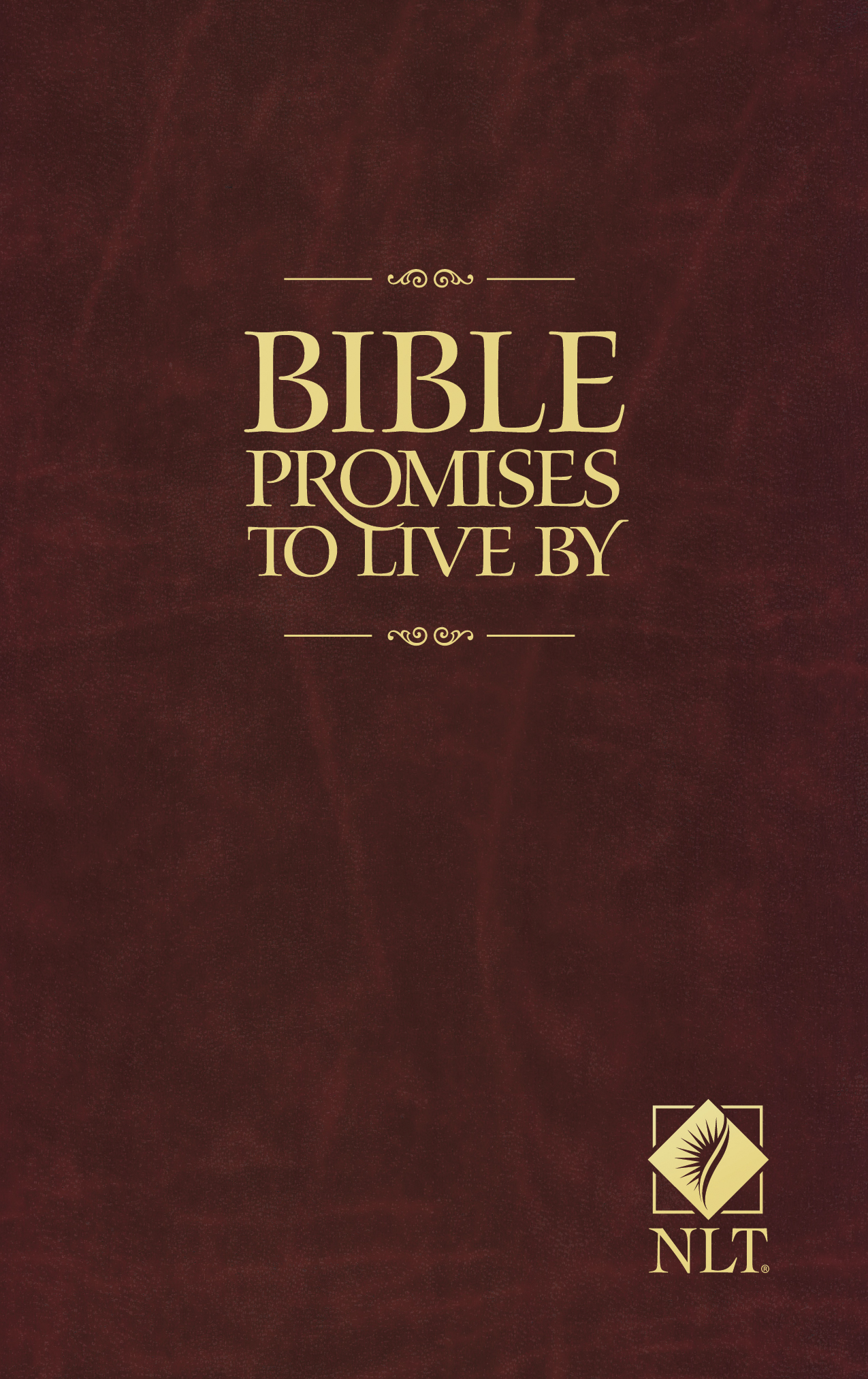 Bible Promises to Live By