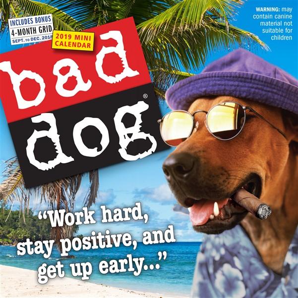 Bad Dog Mini 2019
