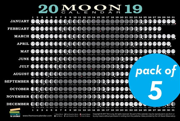 2019 Moon Calendar Card (5 pack)