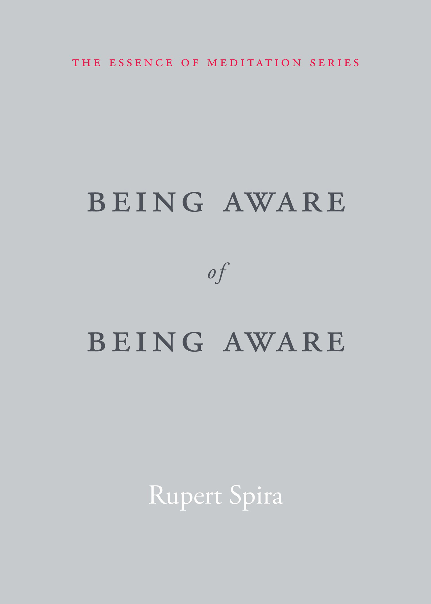 Being Aware of Being Aware