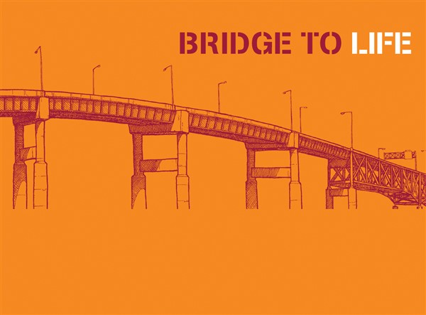 Bridge to Life 25-pack