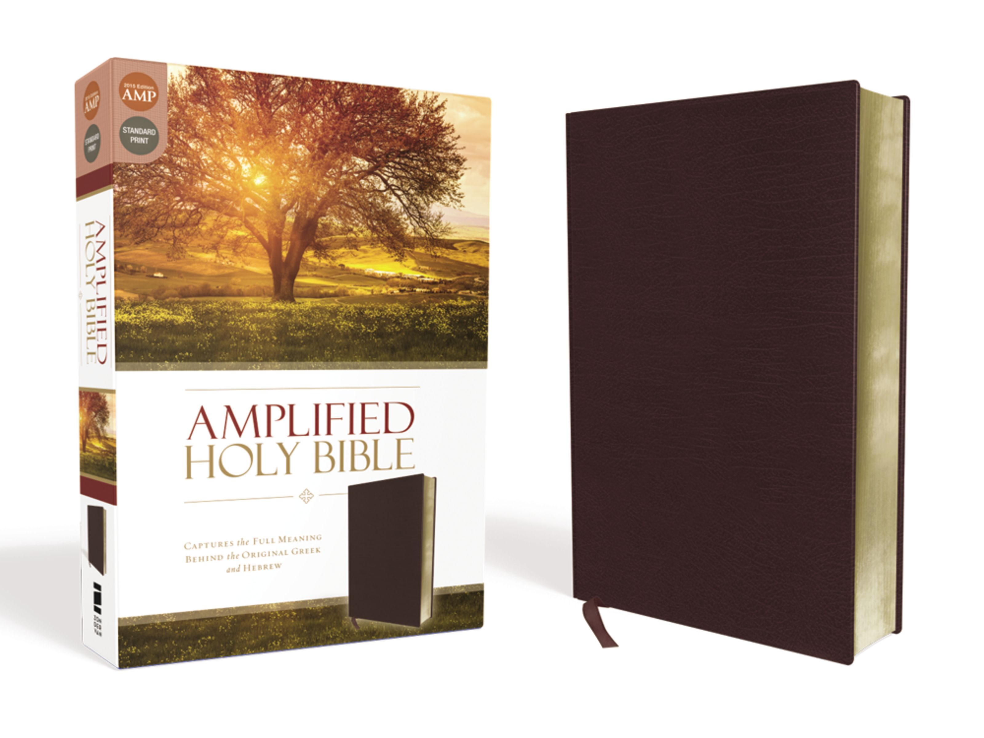 Amplified Holy Bible, Bonded Leather, Burgundy