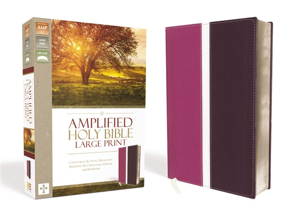 Amplified Holy Bible, Large Print, Imitation Leather, Pink/Purple