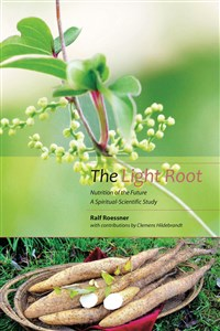 The Light Root