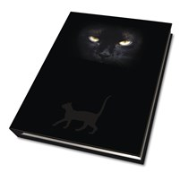 Cat's Eyes Journal