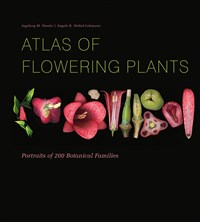 Atlas of Flowering Plants