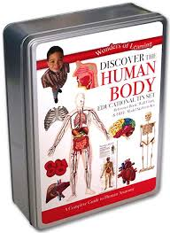 Wonders of Learning Stem Educational Tin Set – Human Body