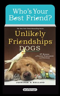 Unlikely Friendships: Dogs 6-copy Counter Display