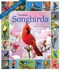 Audubon Songbirds and Other Backyard Birds Picture-A-Day Wall Calendar 2022