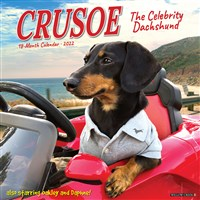 Crusoe the Celebrity Dachshund 2022 Wall Calendar