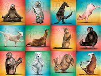 Animal Yoga 500-Piece Puzzle