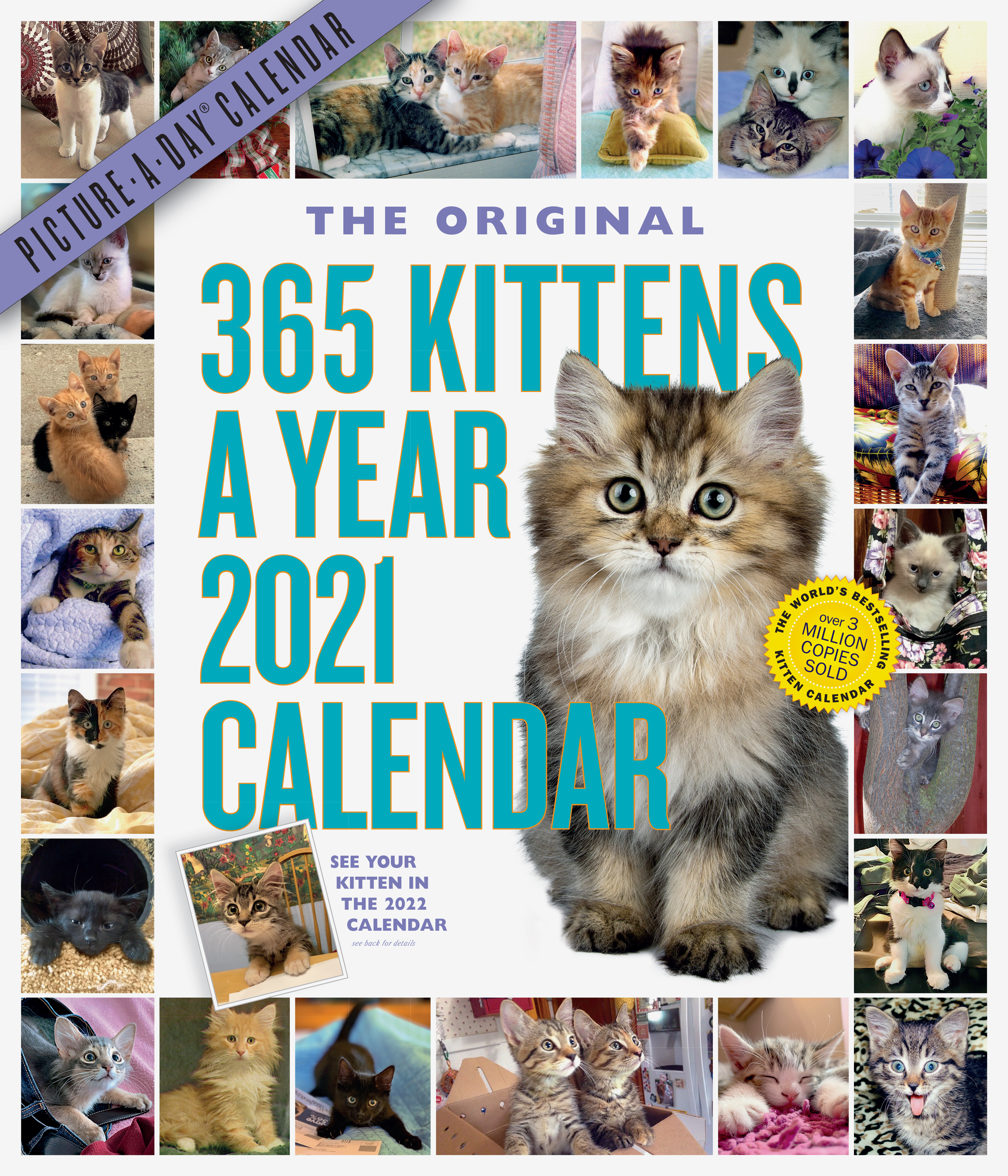 365 Kittens-A-Year Picture-A-Day Wall Calendar 2021