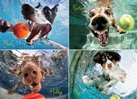 Underwater Dogs: Play Ball 1000-Piece Puzzle